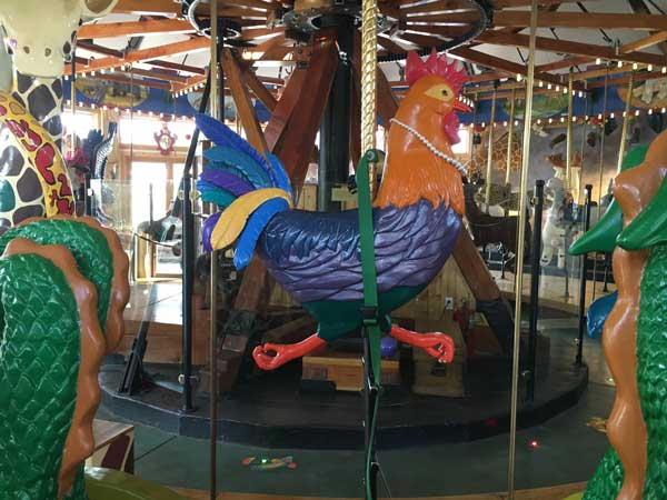 Here is your chance to ride a rooster.