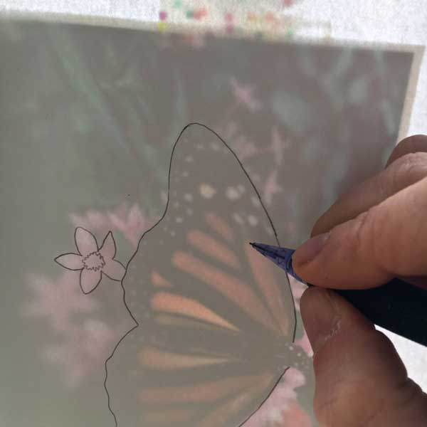 How To Draw And Paint A Butterfly Step By Step Pam Ash