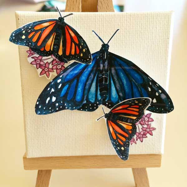 butterfly2-12.jpg