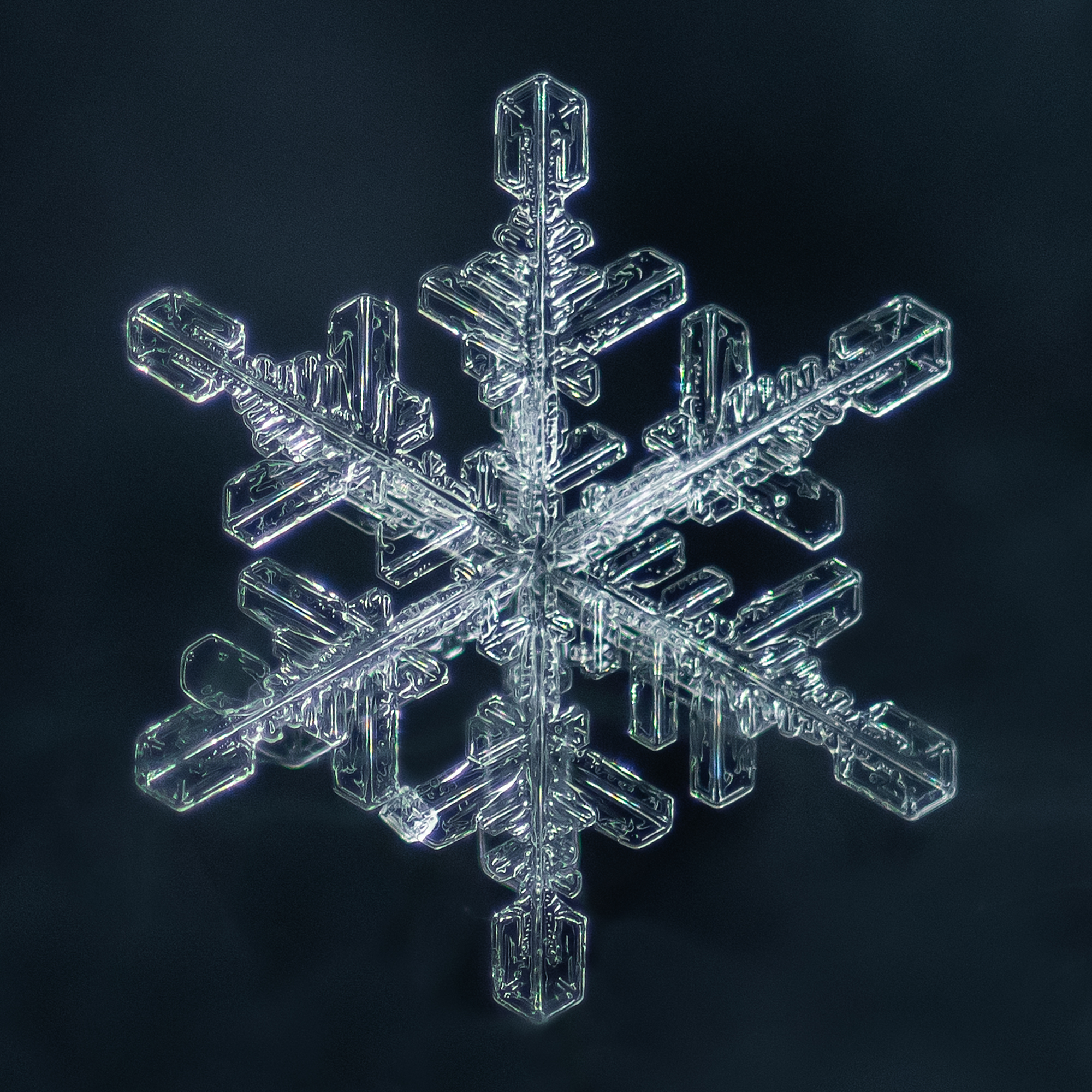 snowflake photography sample-3.jpg