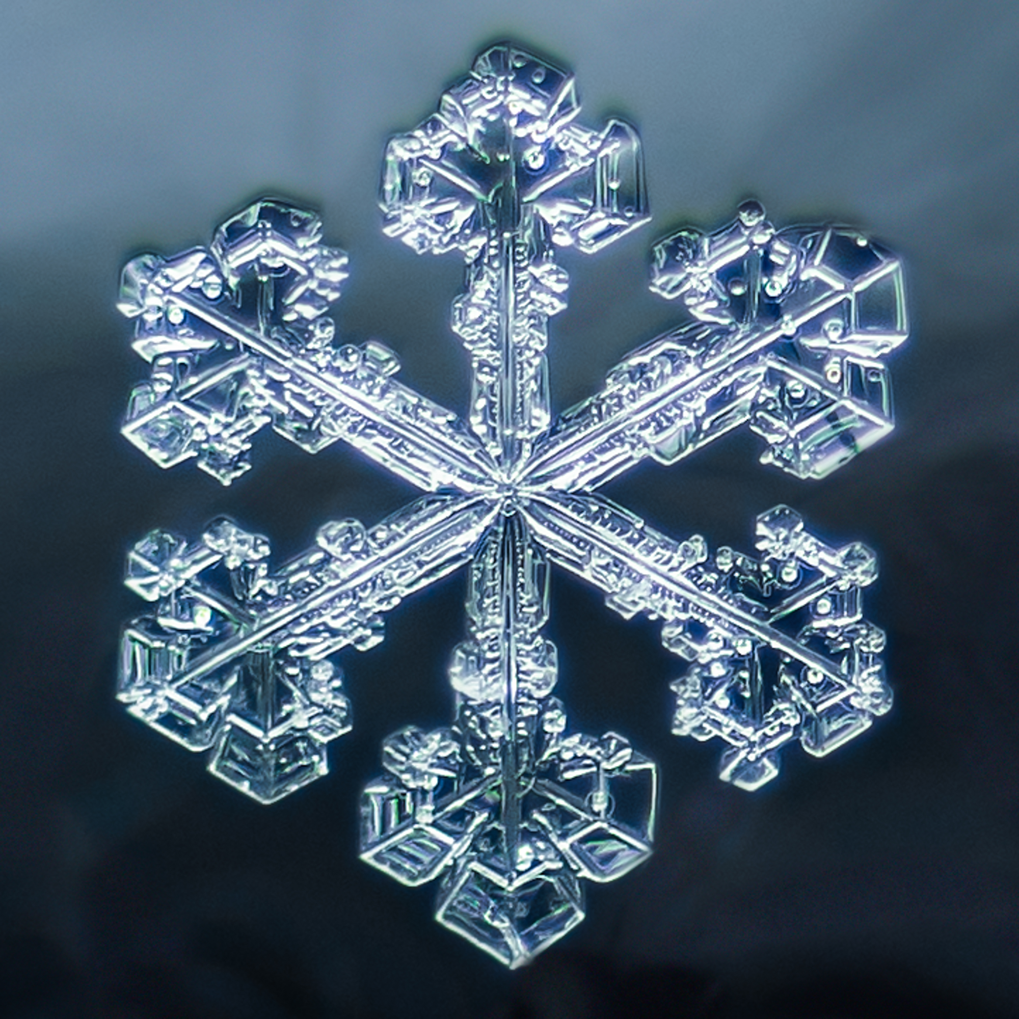 snowflake photography sample 1-2.jpg