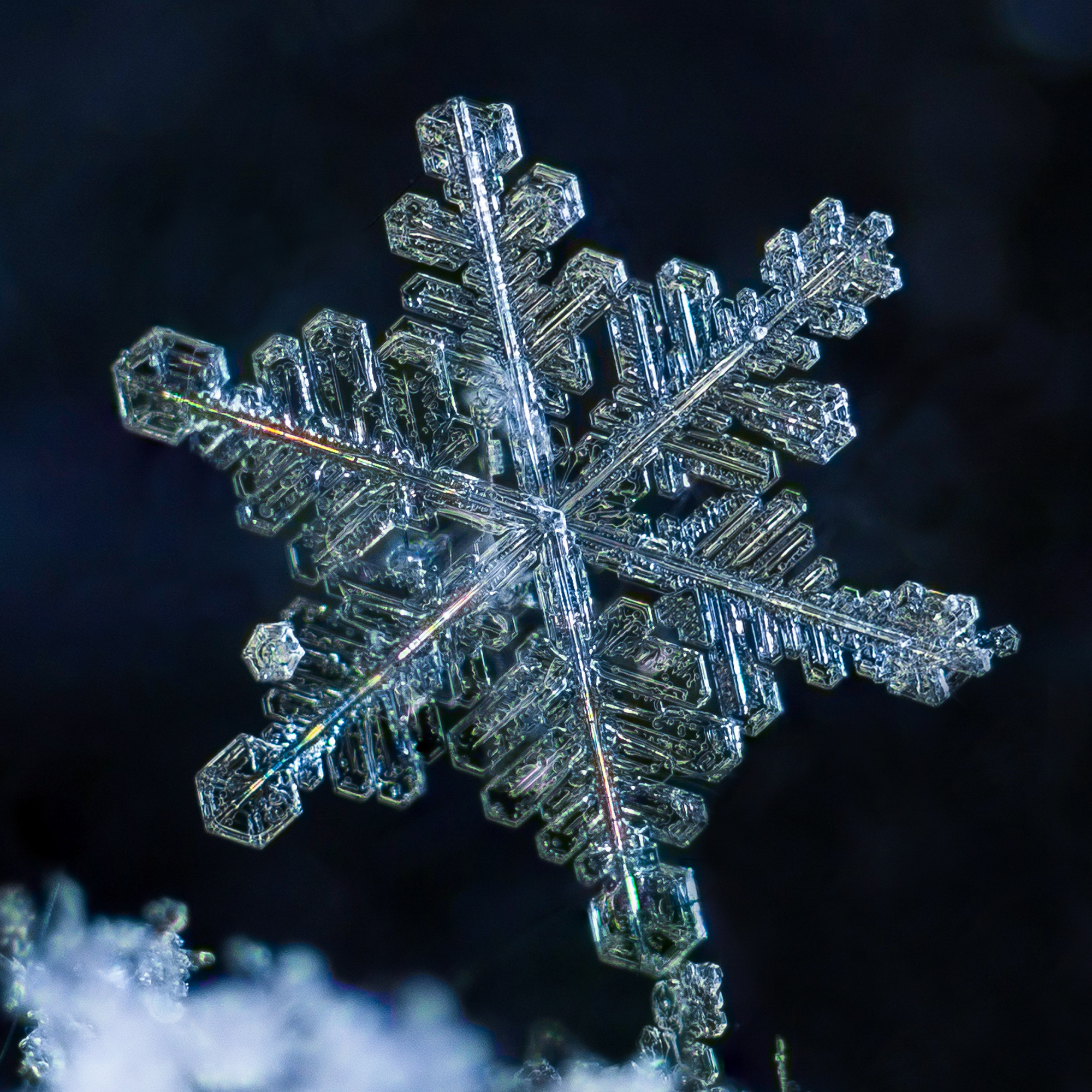 snowflake photography sample 1-7.jpg