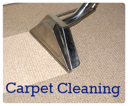 At Sterling Carpet Care you get pre-vacuuming (when necessary), pre-treatment, rinse agent, and deodorizer with the standard cleaning service. Difficult stains will be treated with specialty chemicals as needed also free of charge.  Furniture will be moved upon request (within reason). We also have the ability to treat pet urine in several ways if requested.