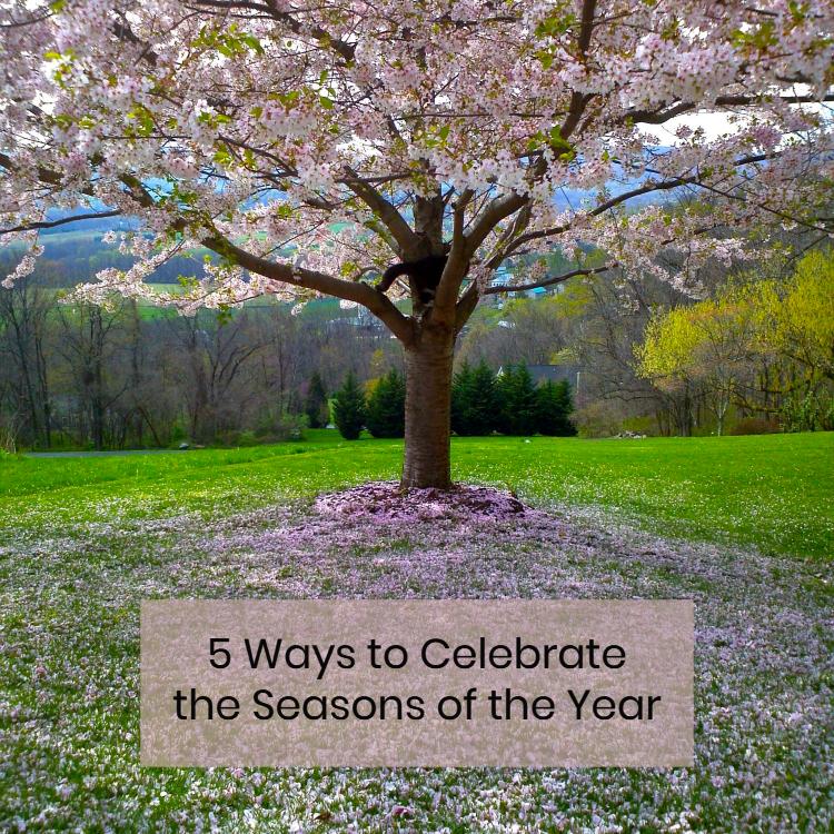 celebrateseasonsblogpost.jpg