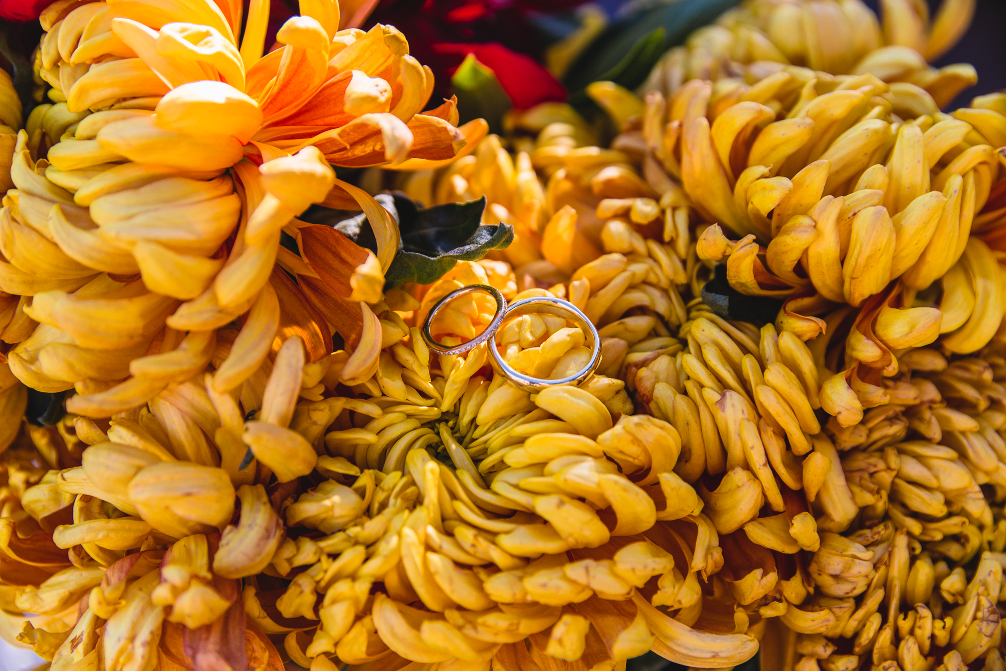 mexico-valle-destination-wedding-rebeccaylasotras-flowers-rings.jpg