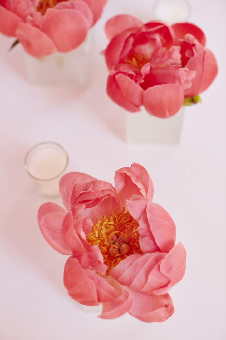 Coral Charm Peonies | Laura's Favorite Flowers | LIG Events - Washington, DC Wedding and Event Planners