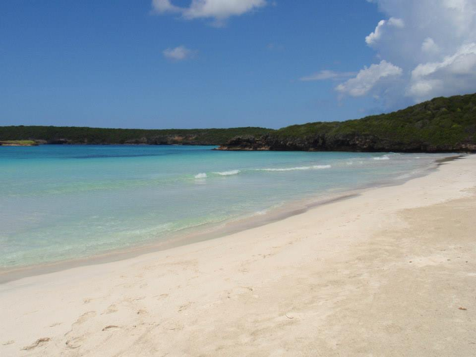 One of my favorite beaches in the world... In Vieques, Puerto Rico