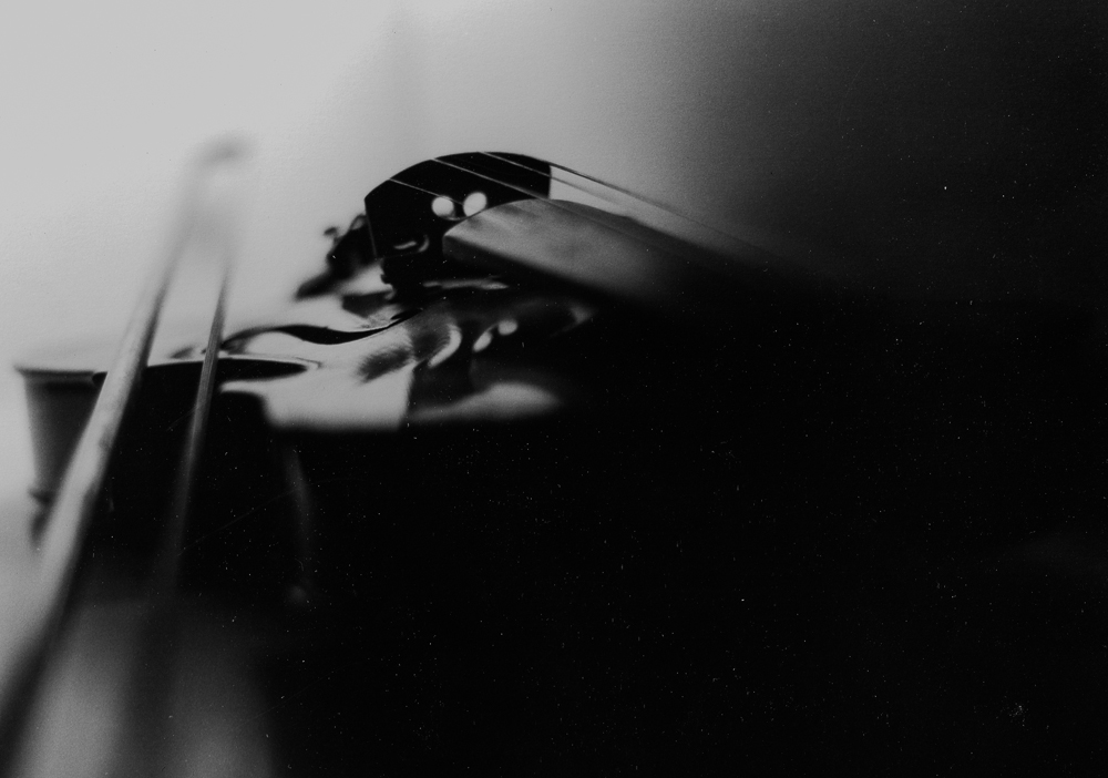 Violin, diy light box, 35 year old camera, brand shiny new film.