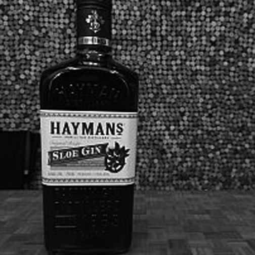 HAYMAN'S SLOE GIN  | England