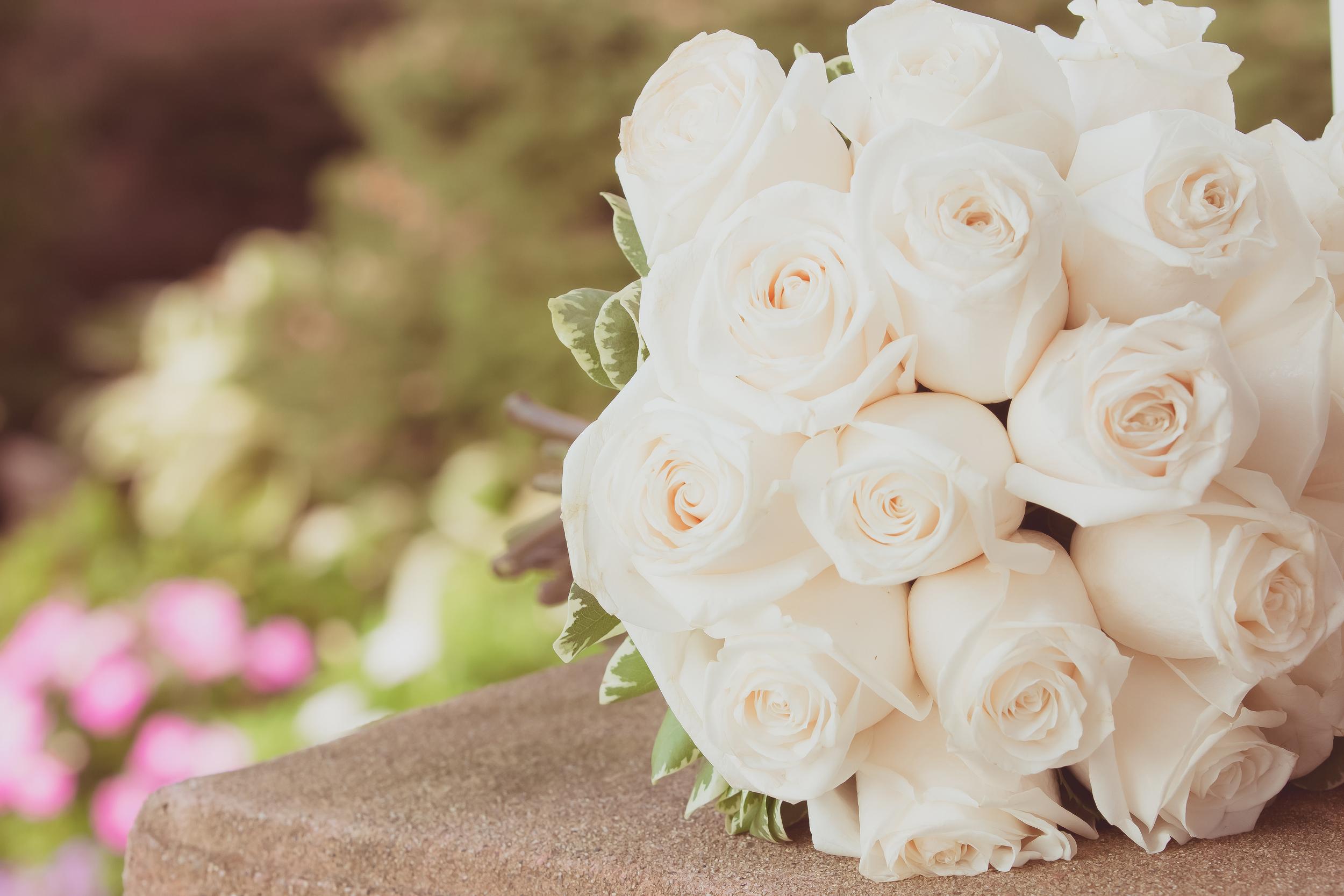 Brianna Proofs of MK Wedding (584 of 832).jpg