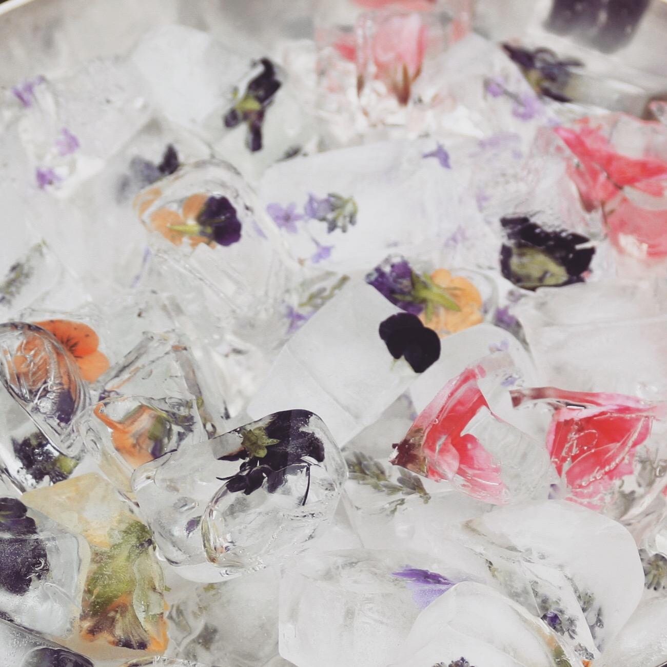 edible flower ice