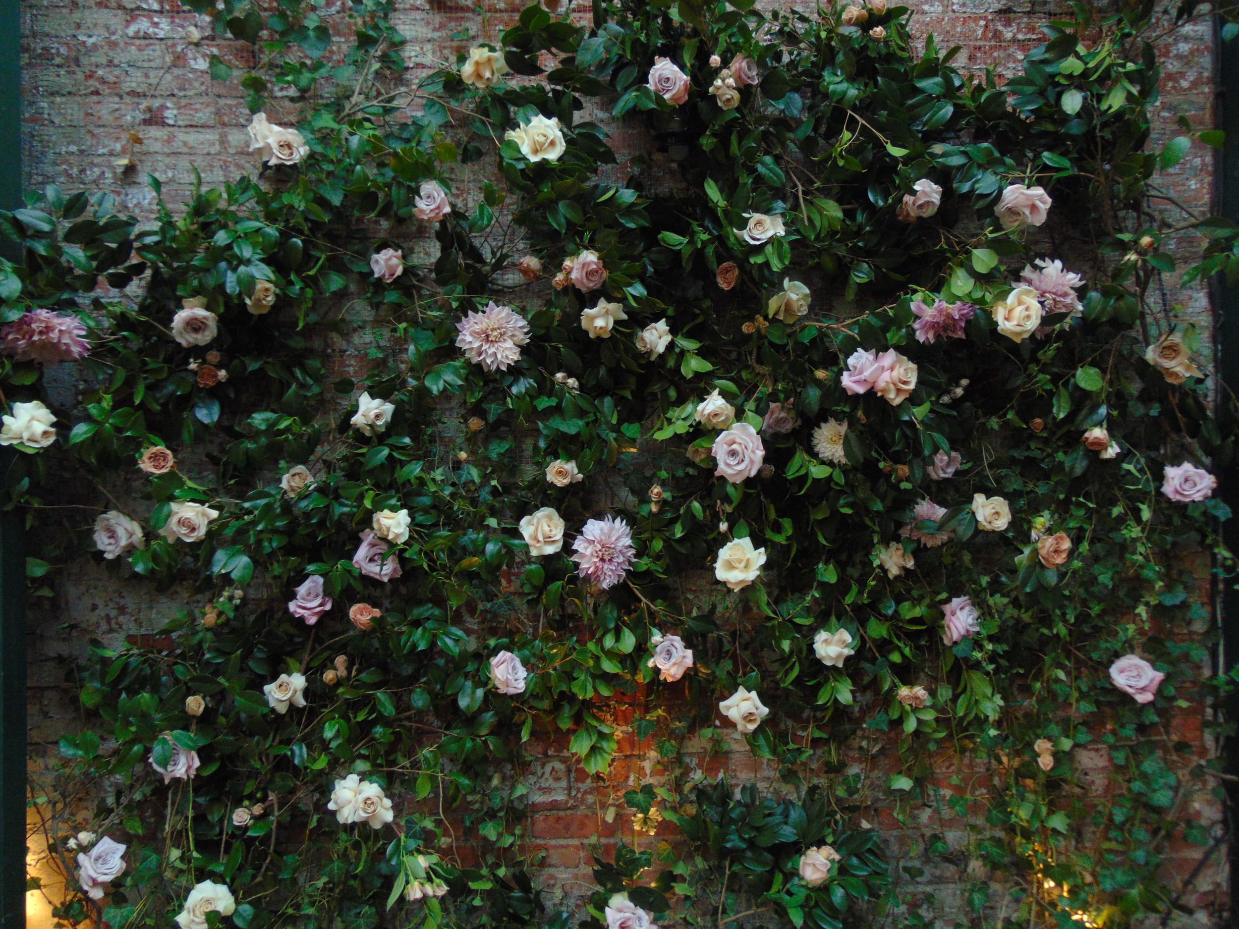Rebecca TAYLOR FLOWER WALL
