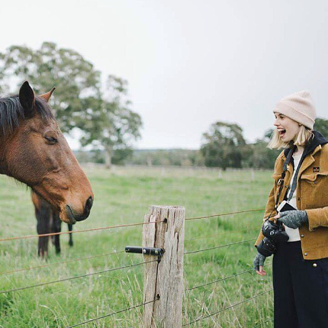 """Just """"horsing around"""" for the long weekend and I can't wait ~~ taken by my soul sister @capturedbycarolyn ............ #roadtrip #salifestyle #portraitpage #instamood #horsesofinstagram #theadelaideset"""