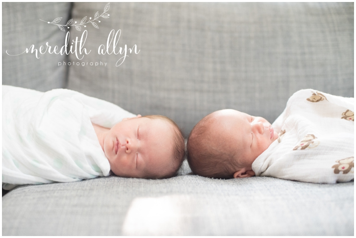 Ann Arbor Twins