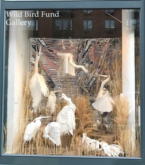 wbf window.jpg