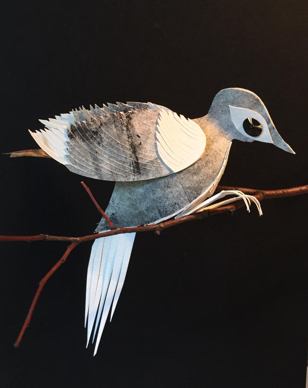 sweet+bird+perching.jpg