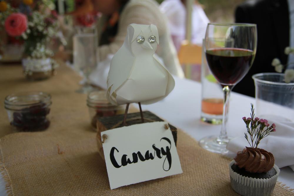 Canary+1+andrew.jpg