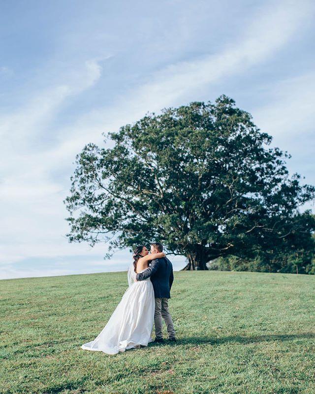 Saturday spent watching these two say I do under this fig ☝🏼💕 Abbey & Jarum (and the best fig tree around 😍) . . . . . . . . . #weddinginspo #weddingphotography #love #couplegoals #realwedding #ido #bridalinspo #bride #groom #instawed #weddingportraits #weddingdress #princessweddingdress #lifestyleweddingphotography #tweedcoastwedding #countrywedding #goldcoastwedding #goldcoastweddingphotographer #byronbaywedding #midginbillhill #midginbilhillwedding #figtree
