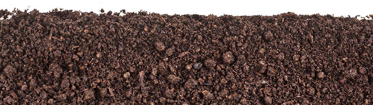 soilbottom.jpg
