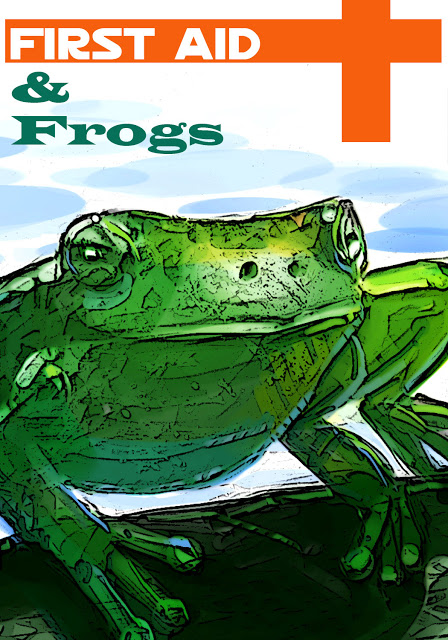frog-color-op-2.jpg