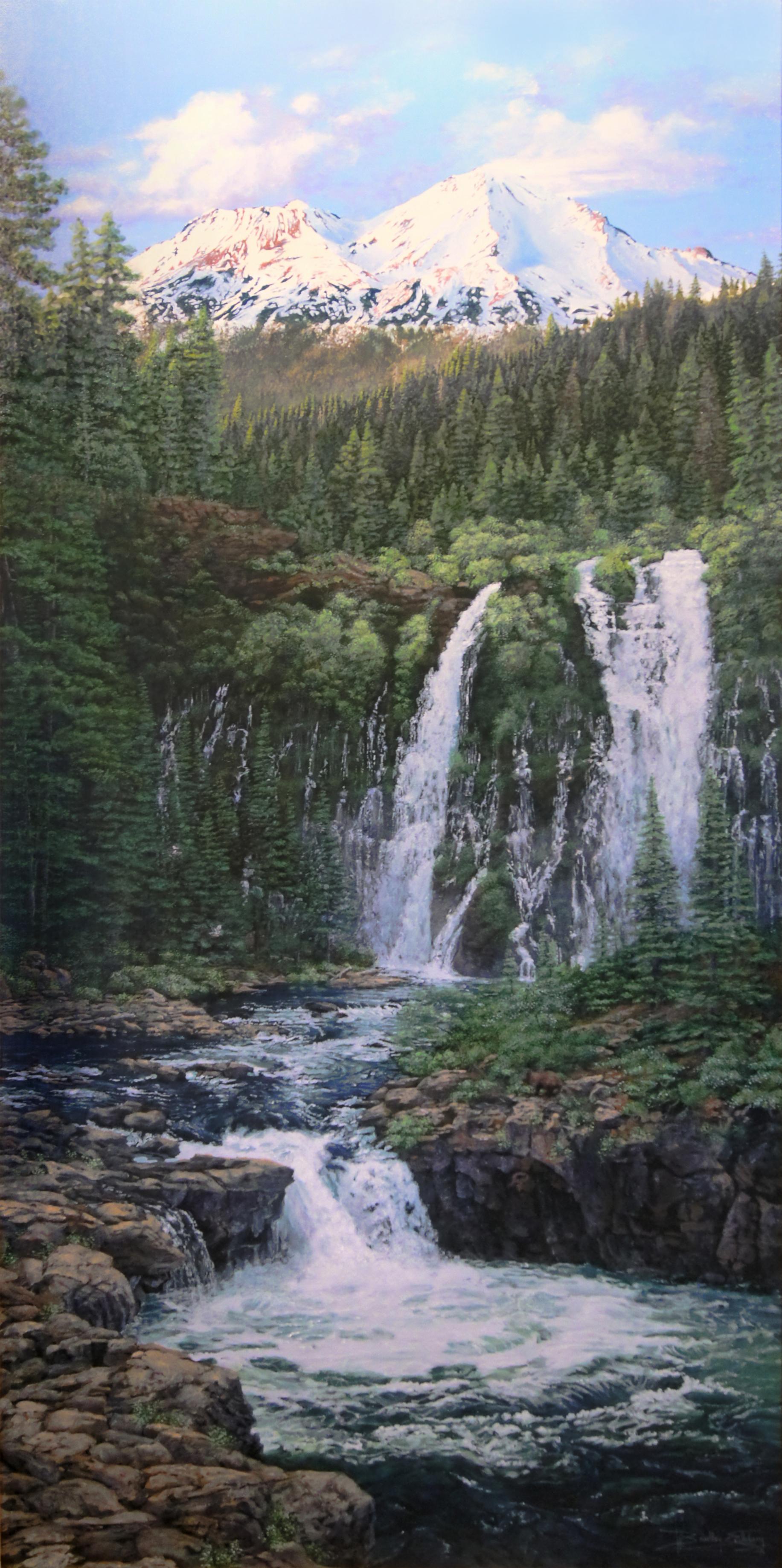 Mount Shasta Watershed