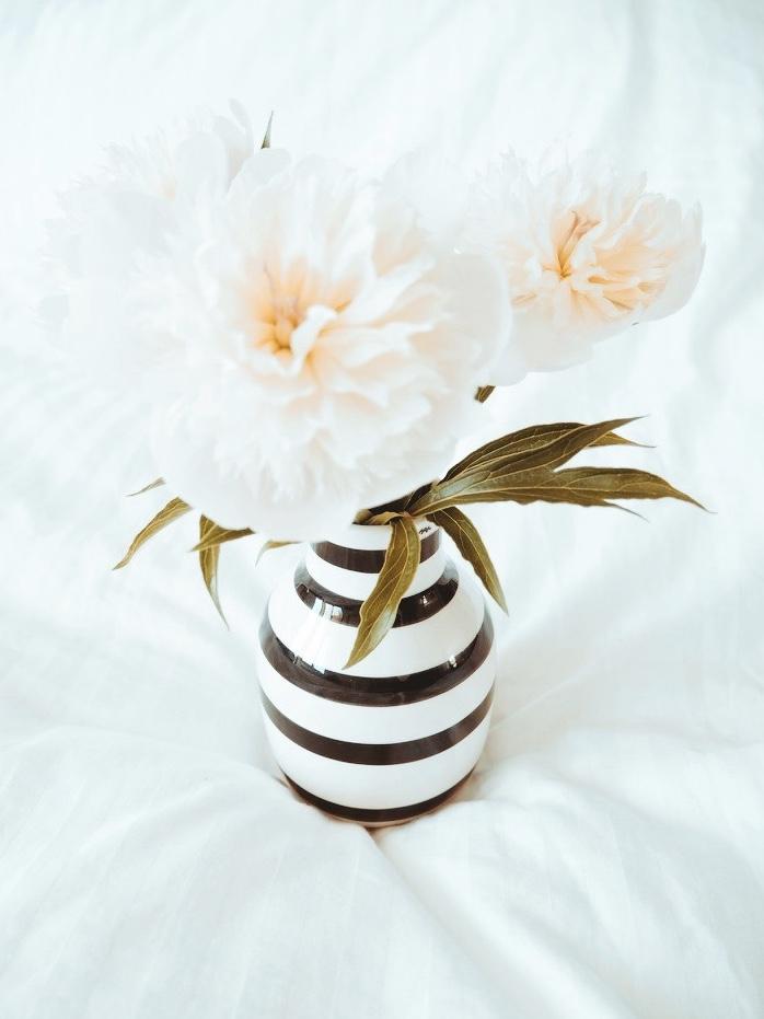 Váza   ZDE