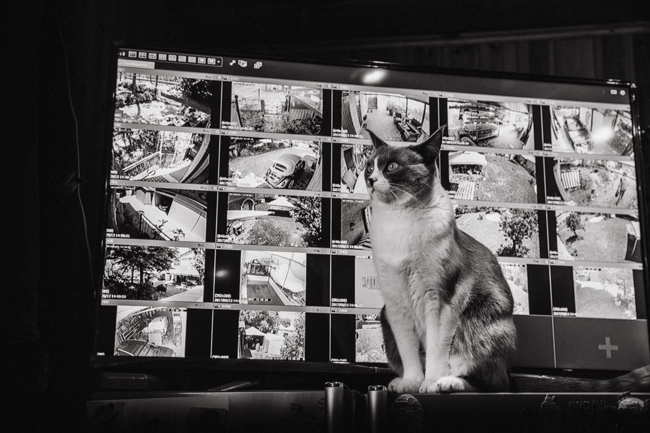 fotografo-reportage-stefano-torreggiani (3).jpg