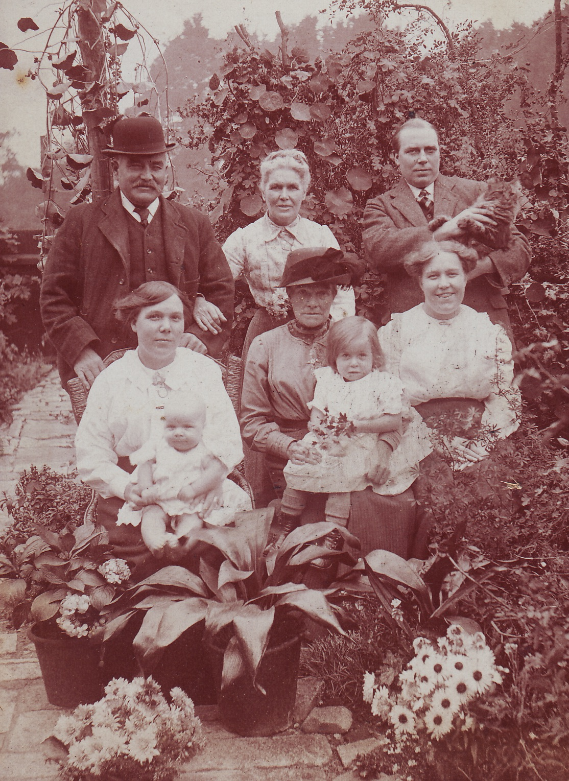 Family photograph c.1915 - Top left, Father Edward Henry Willis, Aunt Honour & Half-brother Alfred Cook Green. Bottom left, sister Harriet Emma Eliza, mother Emma & sister Emily Lottie. Baby nephew William Sydney & niece Olive Emma.