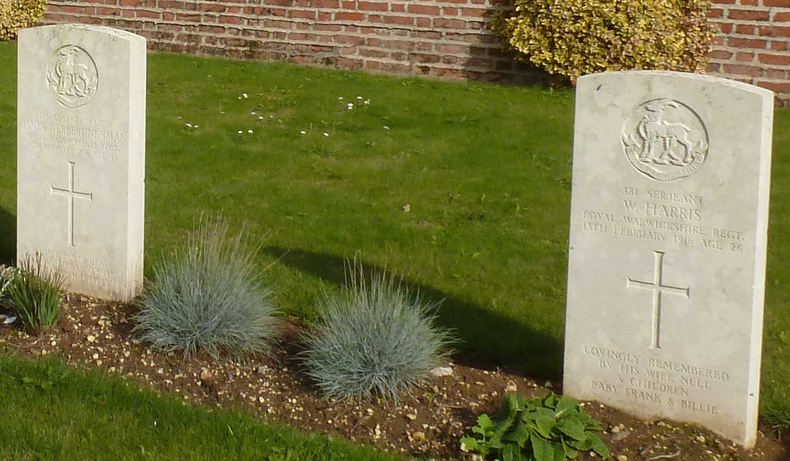 Harris Newman grave stones.jpg