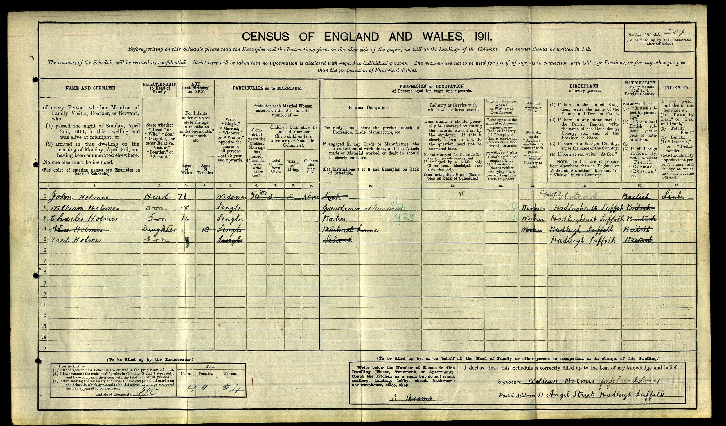anc 1911 census Holmes.jpg