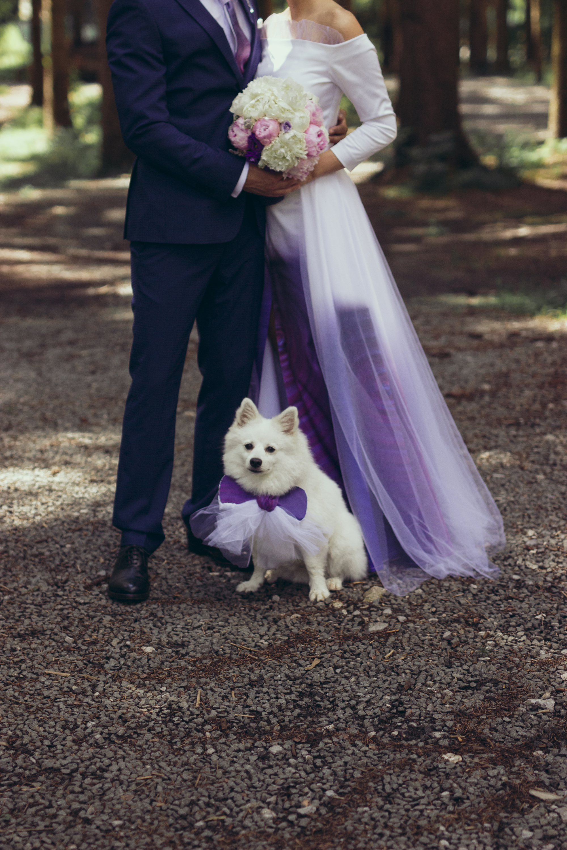 fine art wedding photography engagement session nisa and david 13.jpg