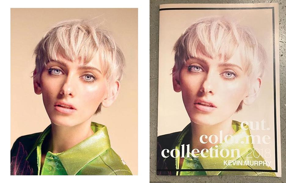kevin murphy campaign
