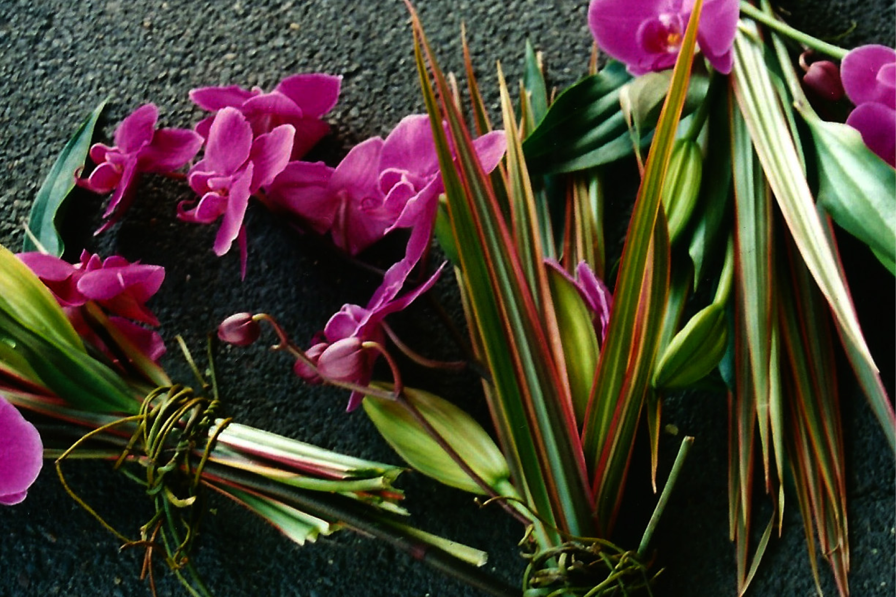 MID_flowersandgardens03.png