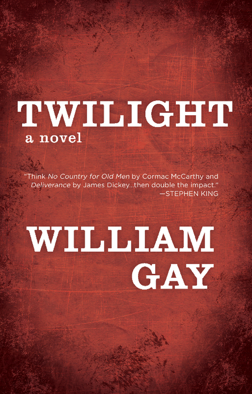 Gay+-+Twilight+-+Final+Cover.jpg