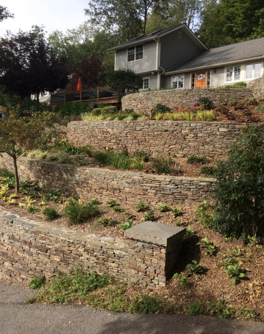 Slope Landscaping with natural fieldstone retaining walls and groundcover plantings.