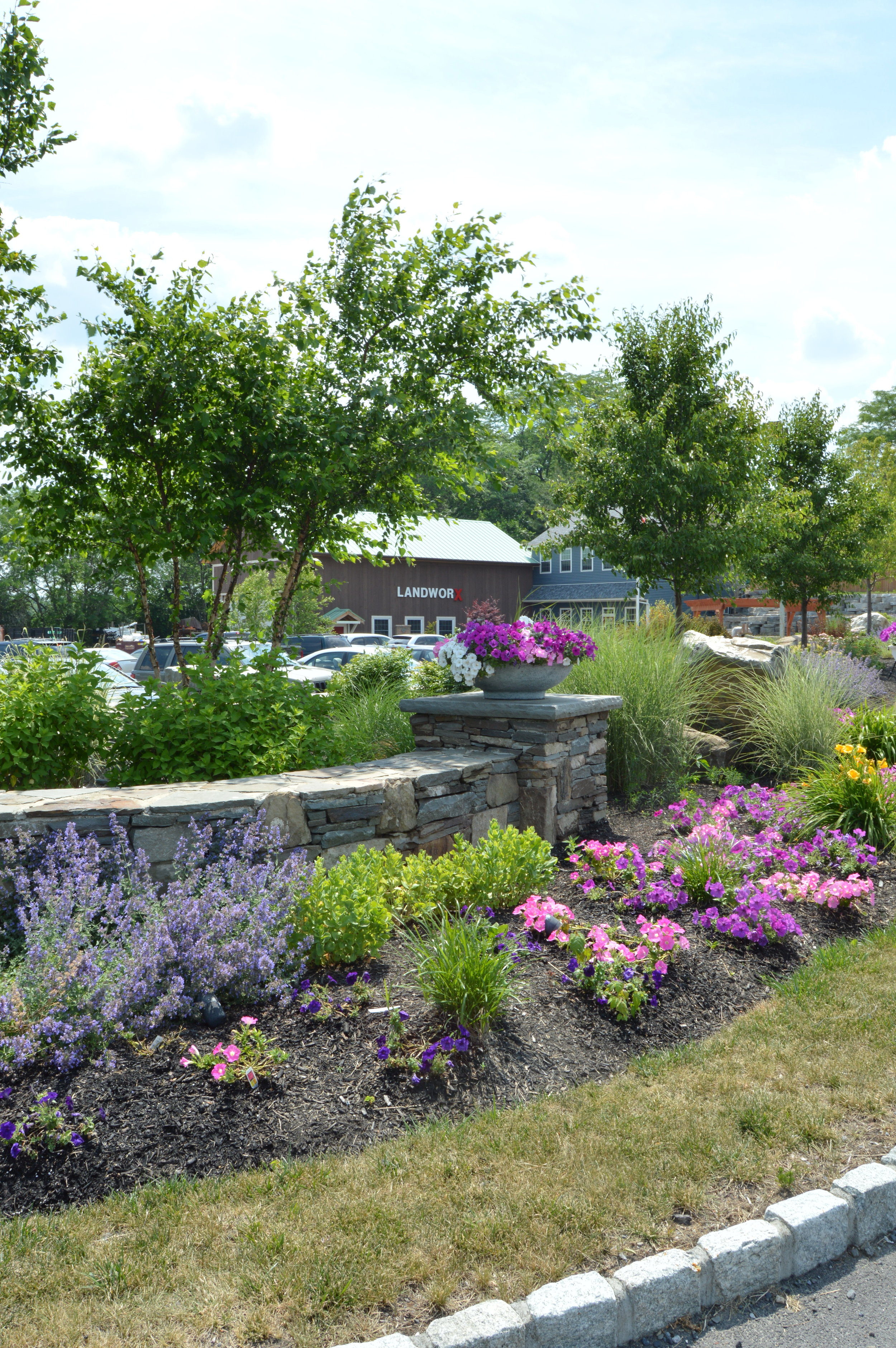 plantings in front of a retaining wall in Goshen, NY