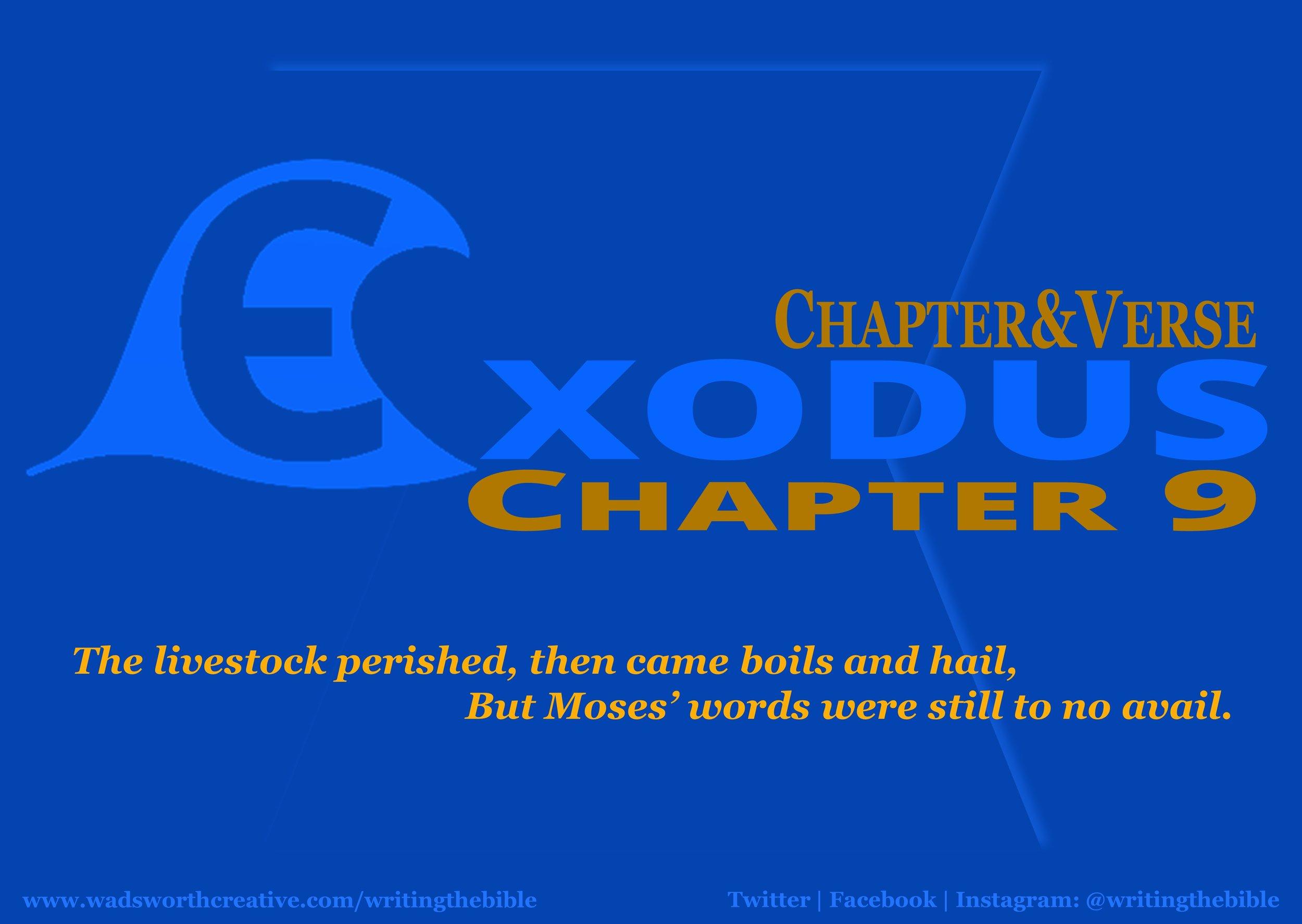 0059 Exodus 9 - Website.JPG