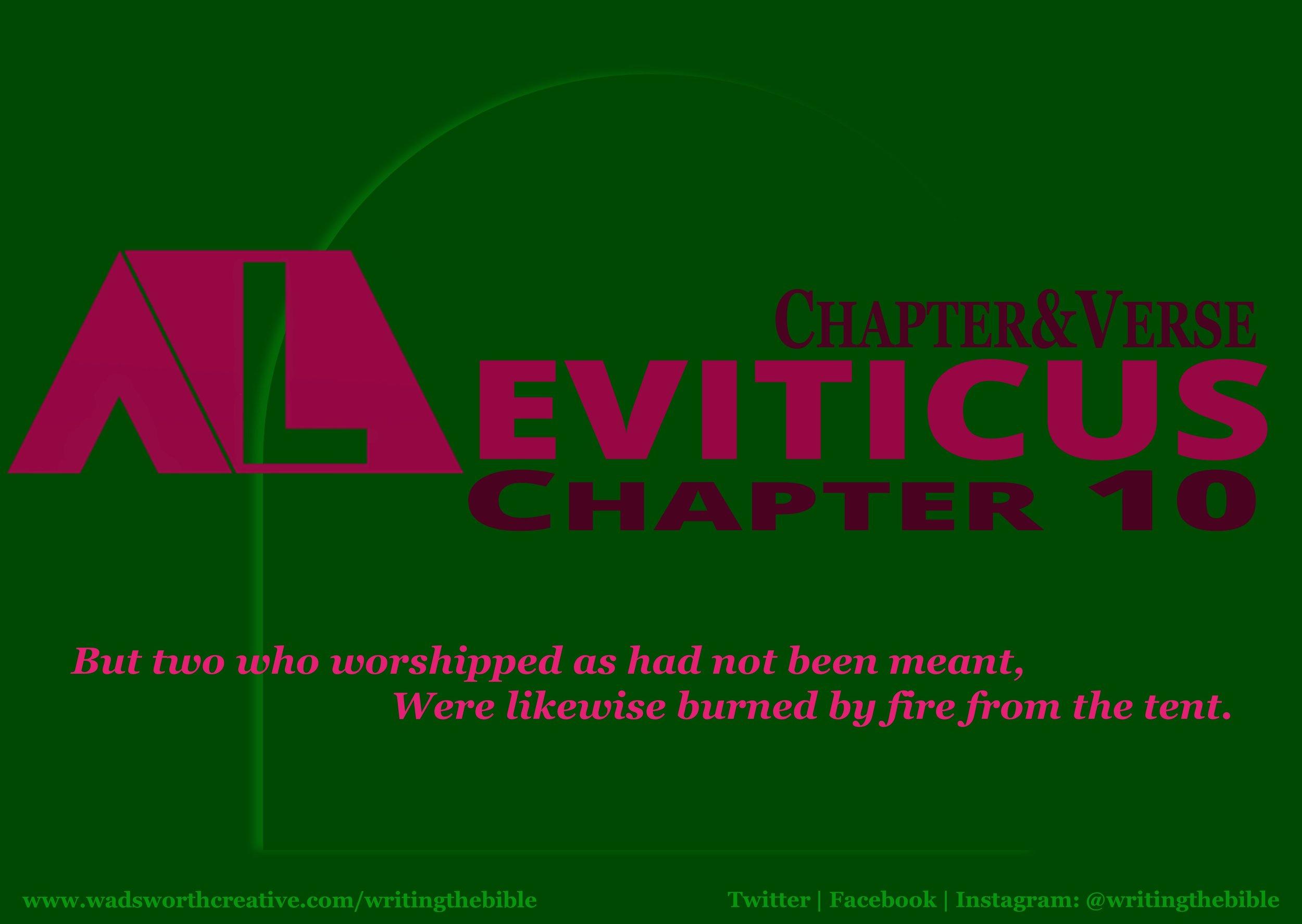 0100 Leviticus 10 - Website.JPG