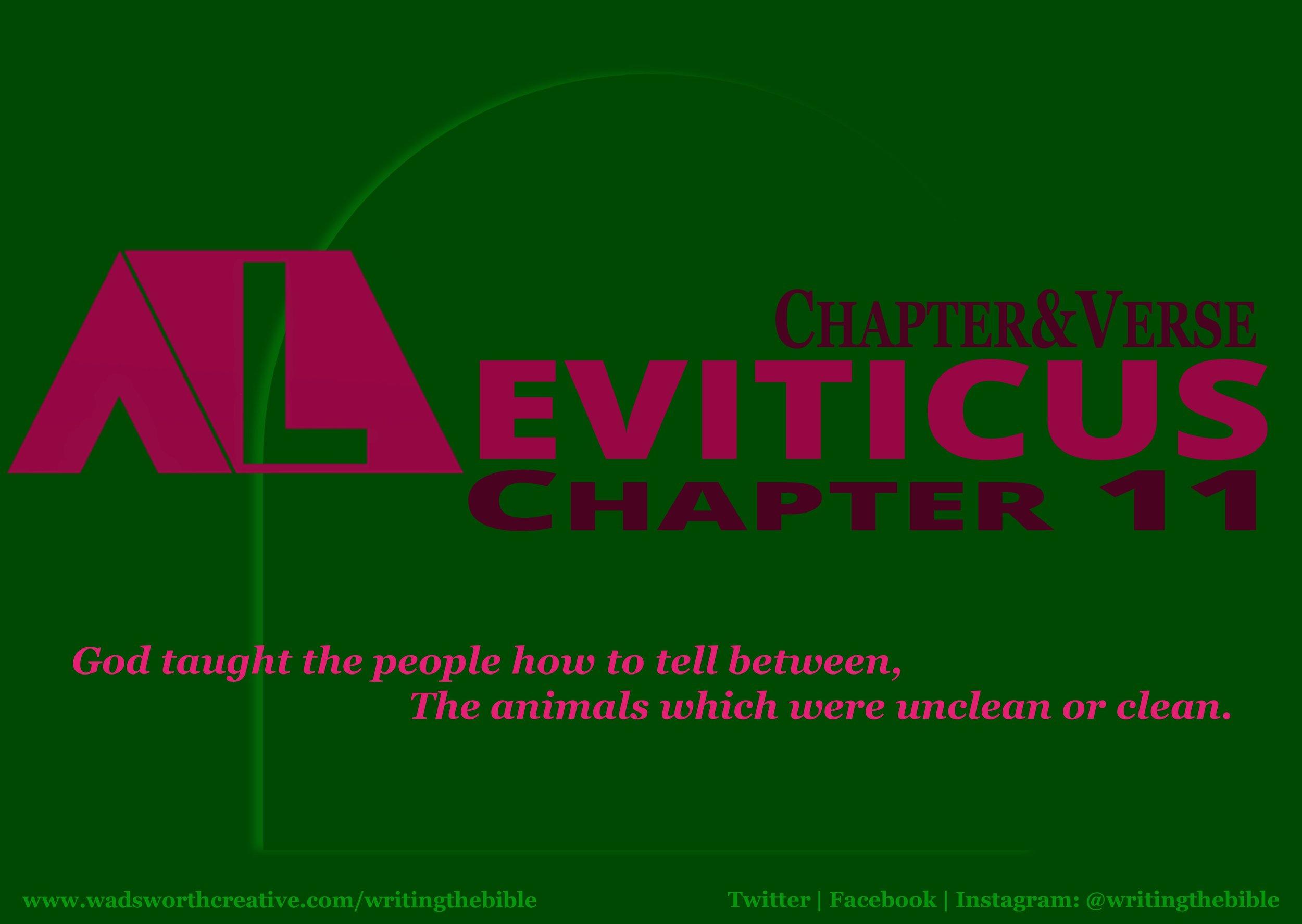 0101 Leviticus 11 - Website.JPG