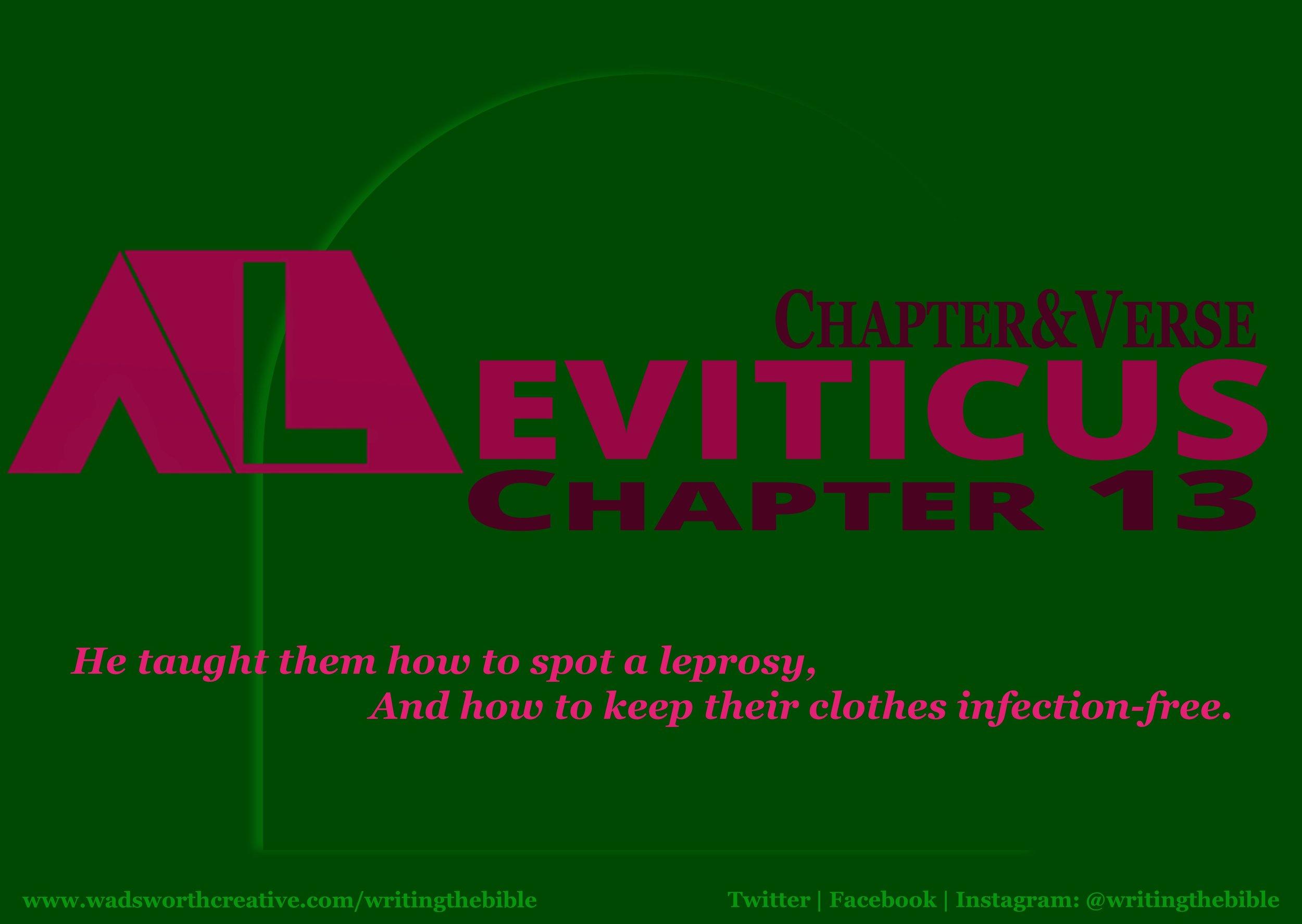 0103 Leviticus 13 - Website.JPG