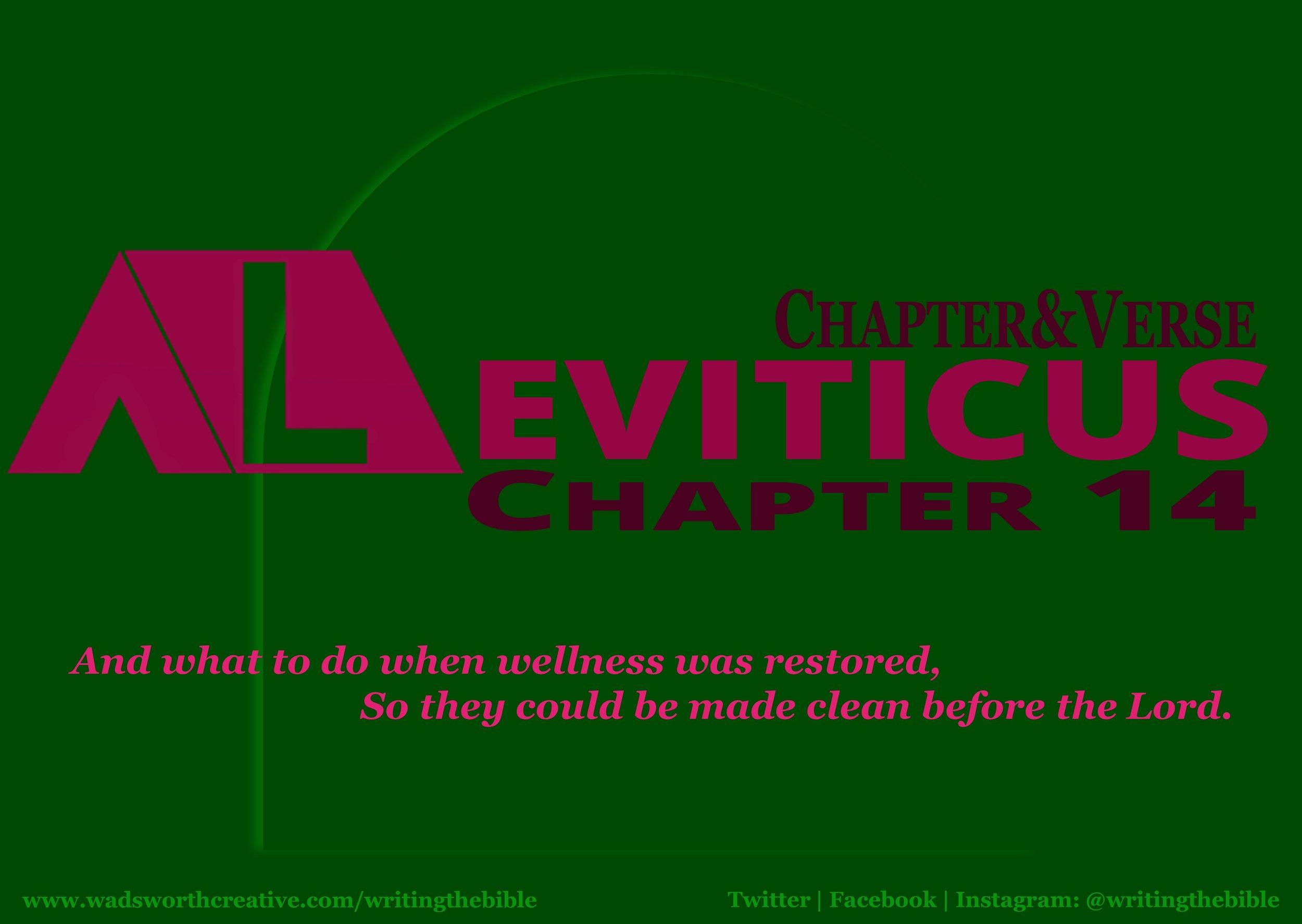 0104 Leviticus 14 - Website.JPG