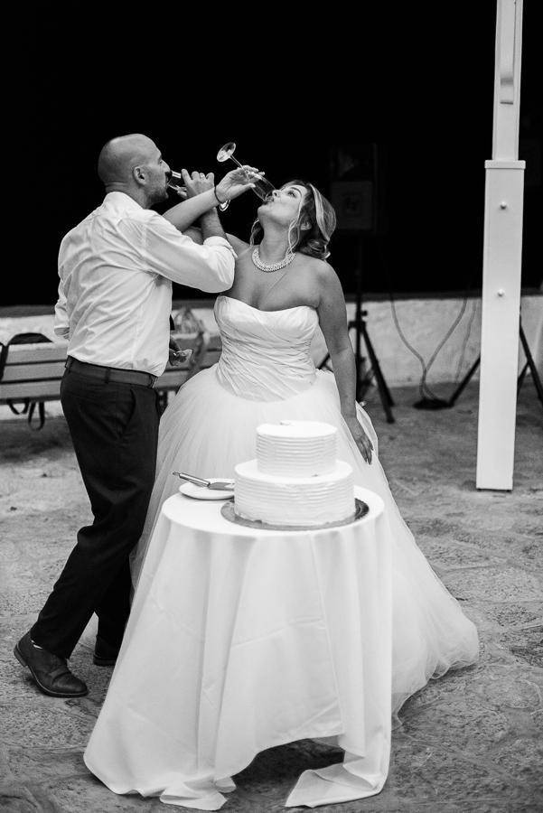 226_Hydra Wedding.jpg