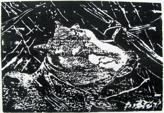 Woodcut by Ashok Pachaiyappan -  Pain  - 2009 - Chennai, India