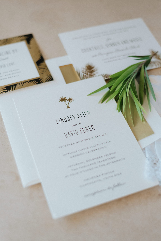 lindsey_david_wedding-59.jpg