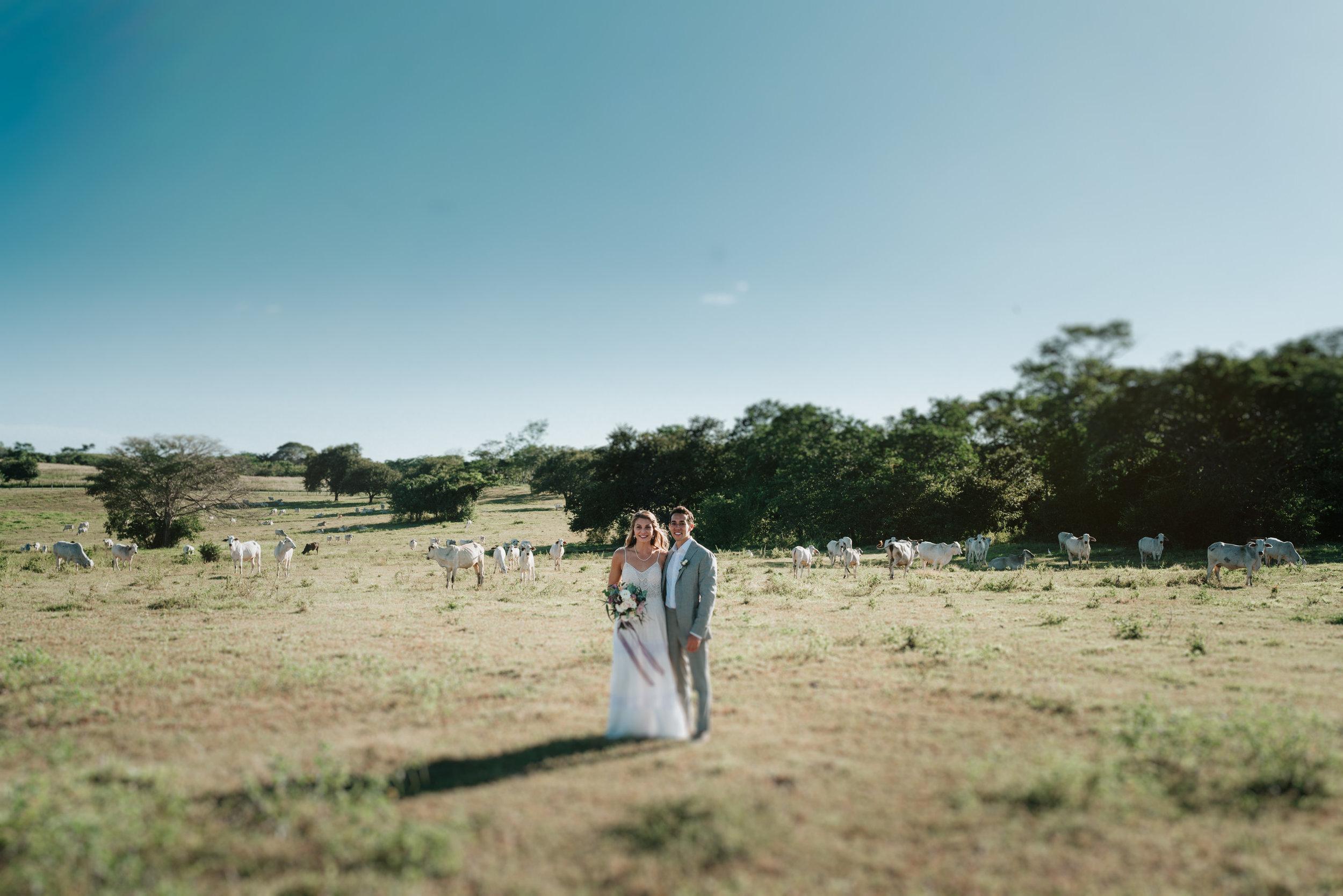 lindsey_david_wedding-173.jpg