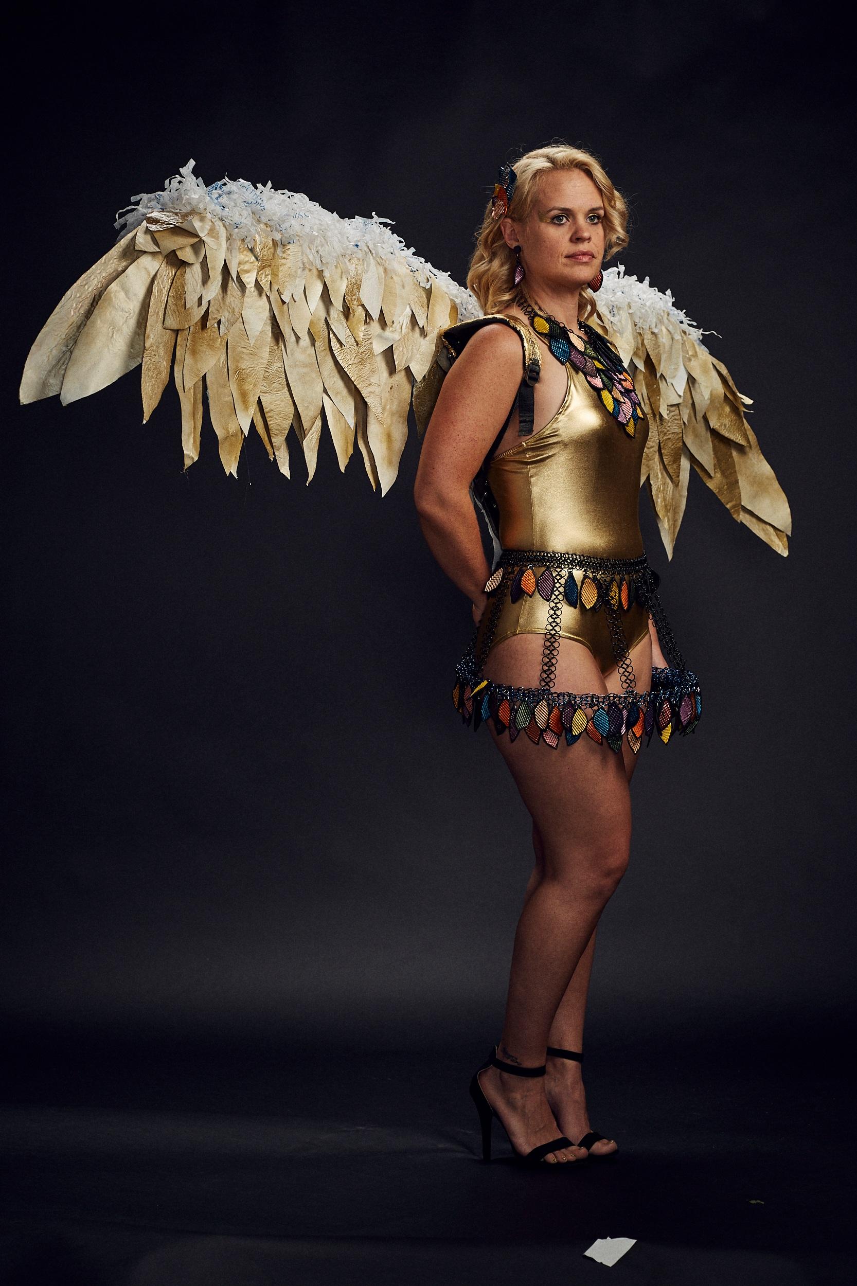 Kathleen Nowak Tucci    Icarus, Coins
