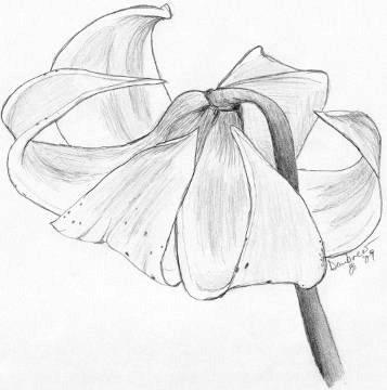 flower4forNana.jpg