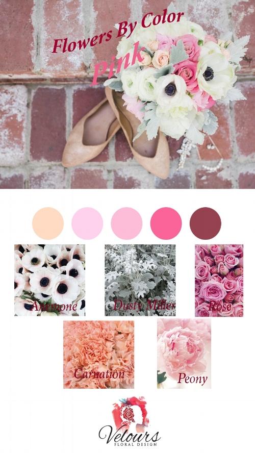 Pink Flowers in Redding CA