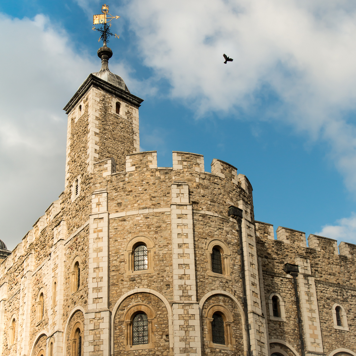 Tower of London and Ravens