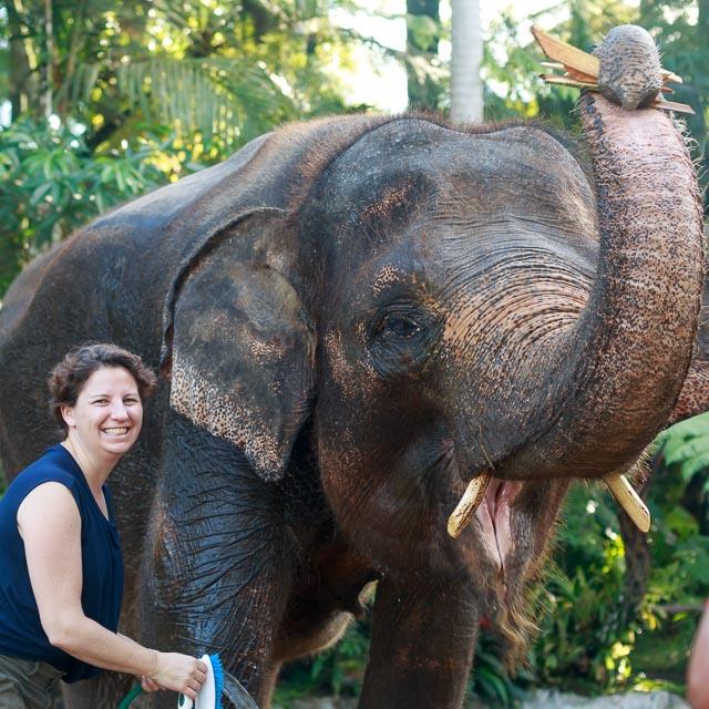 Elephant Sanctuary Indonesia